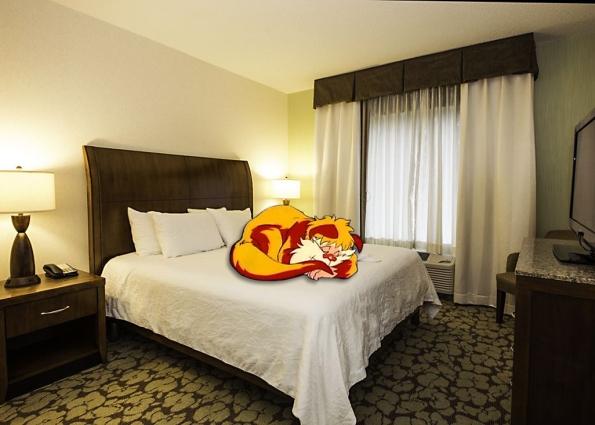 Hotel Snarf 1
